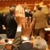Deputaţii dau verde migraţiei aleşilor locali