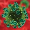 Numărul deceselor cauzate de HIV, în scădere!
