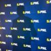 Săftoiu, Atanasiu și Bușoi se luptă pentru șefia PNL București