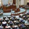 Legea grațierii, adoptată tacit de senatori