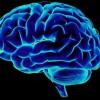 """Studiu șocant despre modul în care """"doarme"""" creierul"""