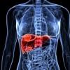 Simptome ale unei afecțiuni a ficatului