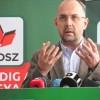 PSD retrage proiectele susținute de UDMR
