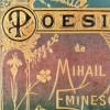 Licitație cu obiecte care i-au aparținut lui Eminescu