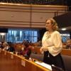 Maria Grapini vrea o punte România-CE, în domeniul infrastructurii!