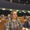Maria Grapini, moderator al unei conferințe internaționale pe tema Balcanilor