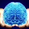 Un joc pe calculator previne demența