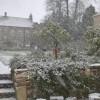 Cod roșu de ninsori și viscol în Europa