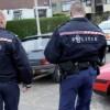 Cinci români, morți într-un accident în Olanda