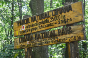 parcul natural comana 2