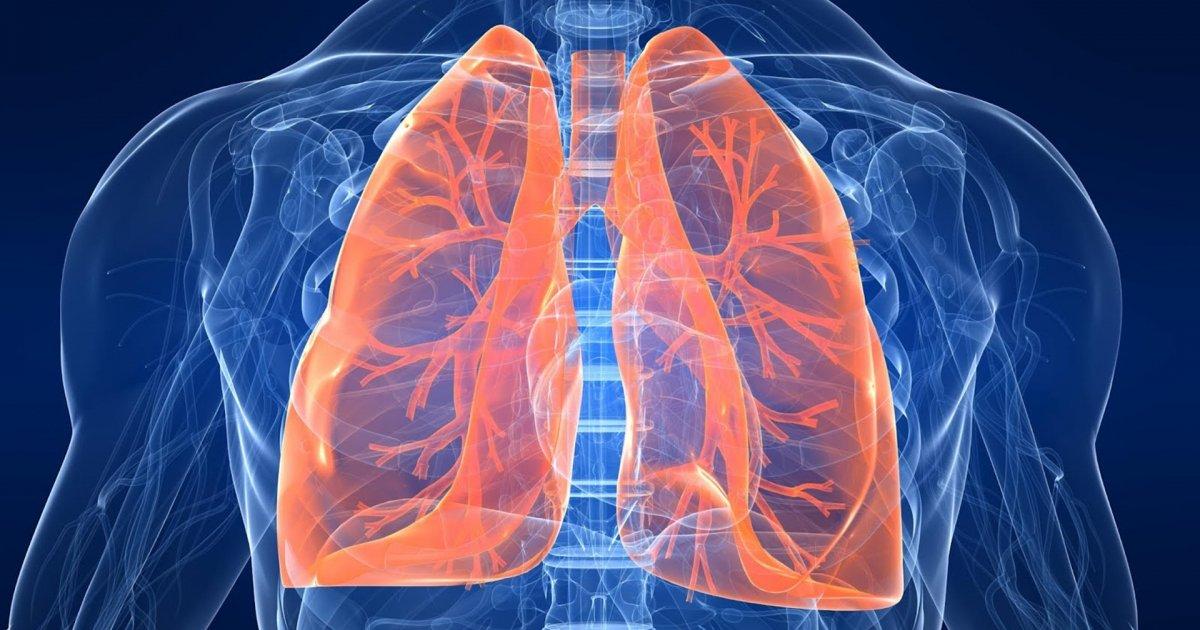 pierdere în greutate cu fibroză pulmonară